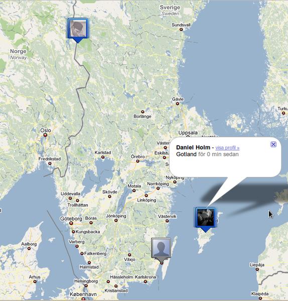 Julgransjakt på Gotland.